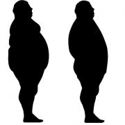 Free Yoga at Home Natural Weight Loss Program