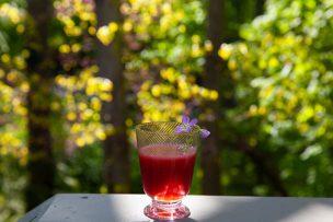 Rhubarb Black Currant Margaritas