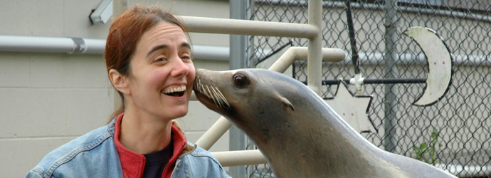 Valentine's Day Sea Lion Kisses