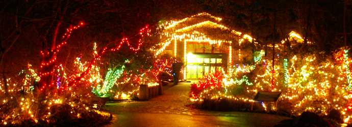 20th Annual Sea of Lights