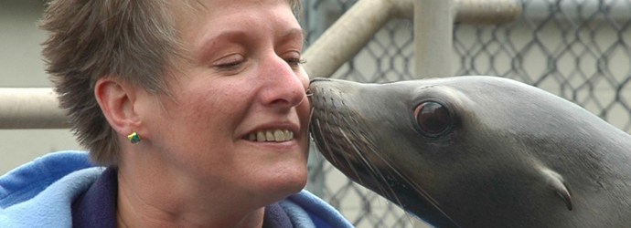 Sea Lion Kisses
