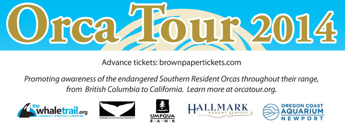 Orca Tour 2014