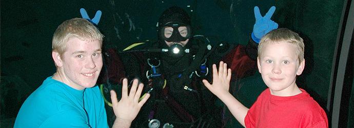 Dive Presentation