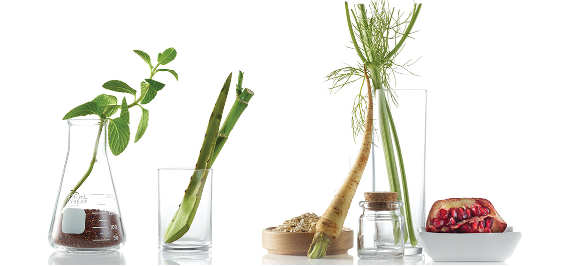 botanicals and beakers, a mxiture of natural ingredients and science