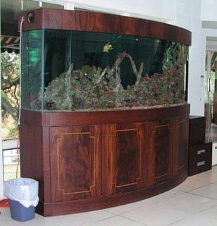 Large custom built mahogany wood 660gal fish tank for sale for Amazon fish tanks for sale