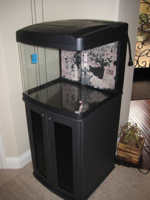 Biocube 29 Tank And Stand For Sale Hardware Austin