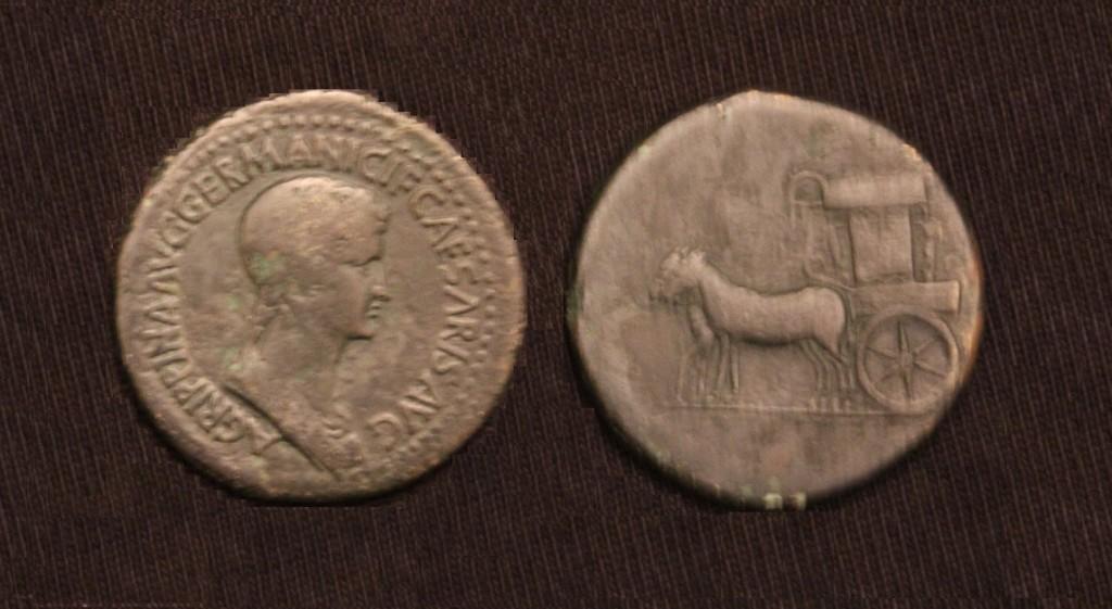 Agripina-Jr Ses