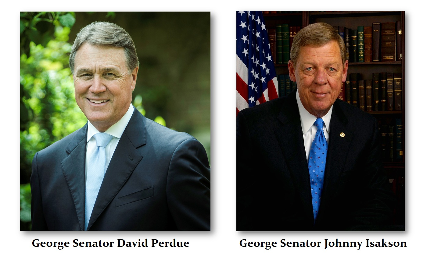 Georgia-Senators