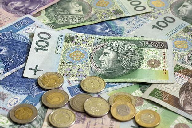 polnisch zloty euro