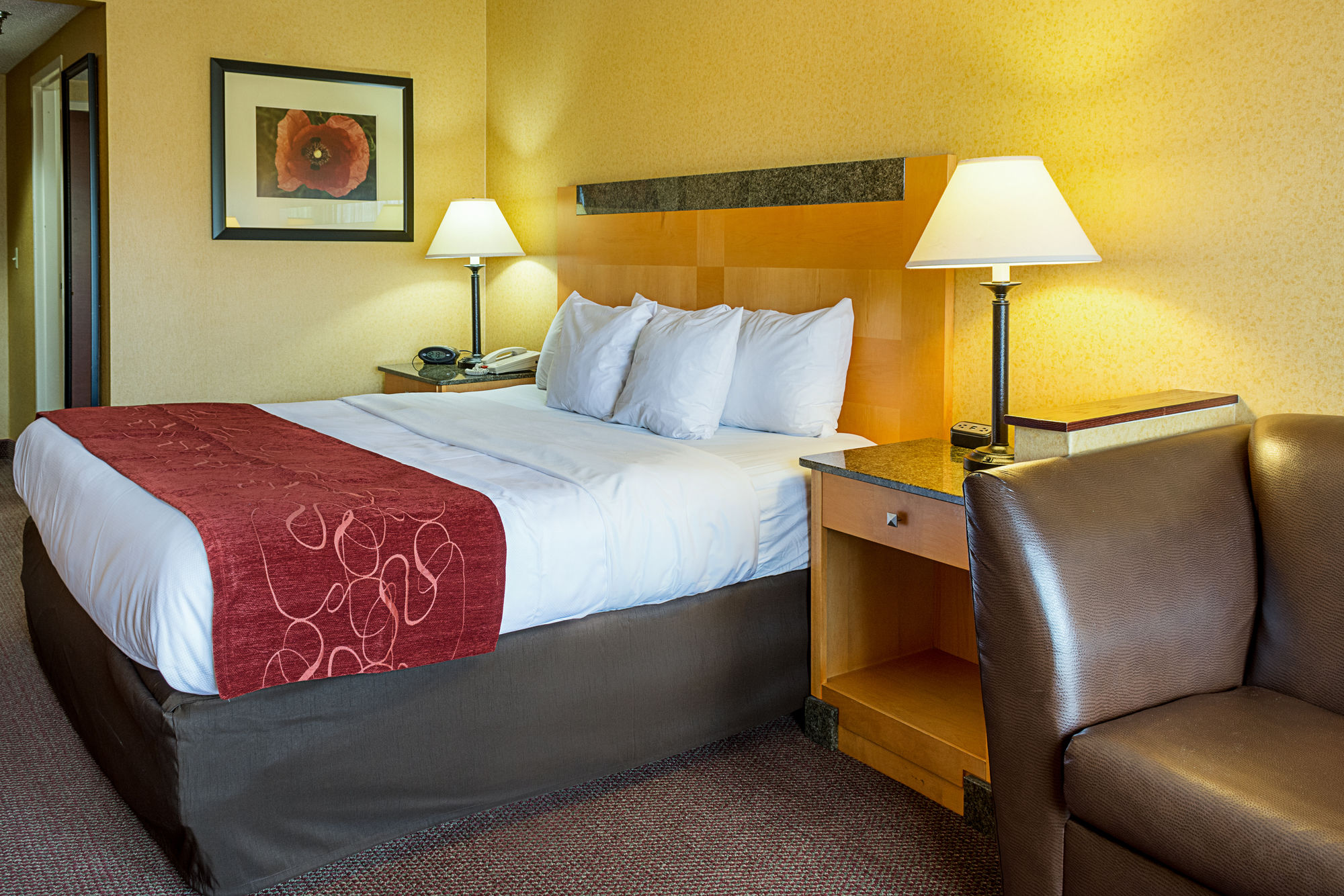 Comfort Suites South Park in Colonial Heights, VA