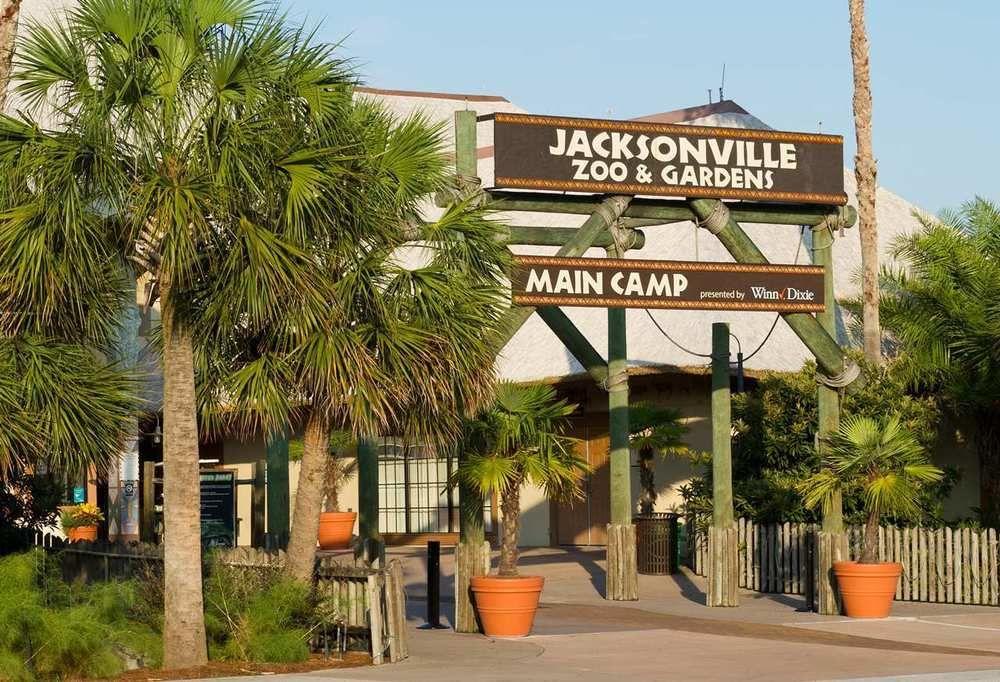 Discount Coupon For Hilton Garden Inn Jacksonville Airport In Jacksonville Florida Save Money