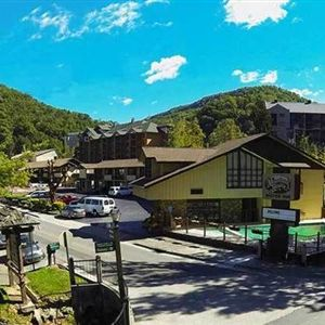 Discount coupon for mountain house motor inn downtown in for Motor lodge gatlinburg tn