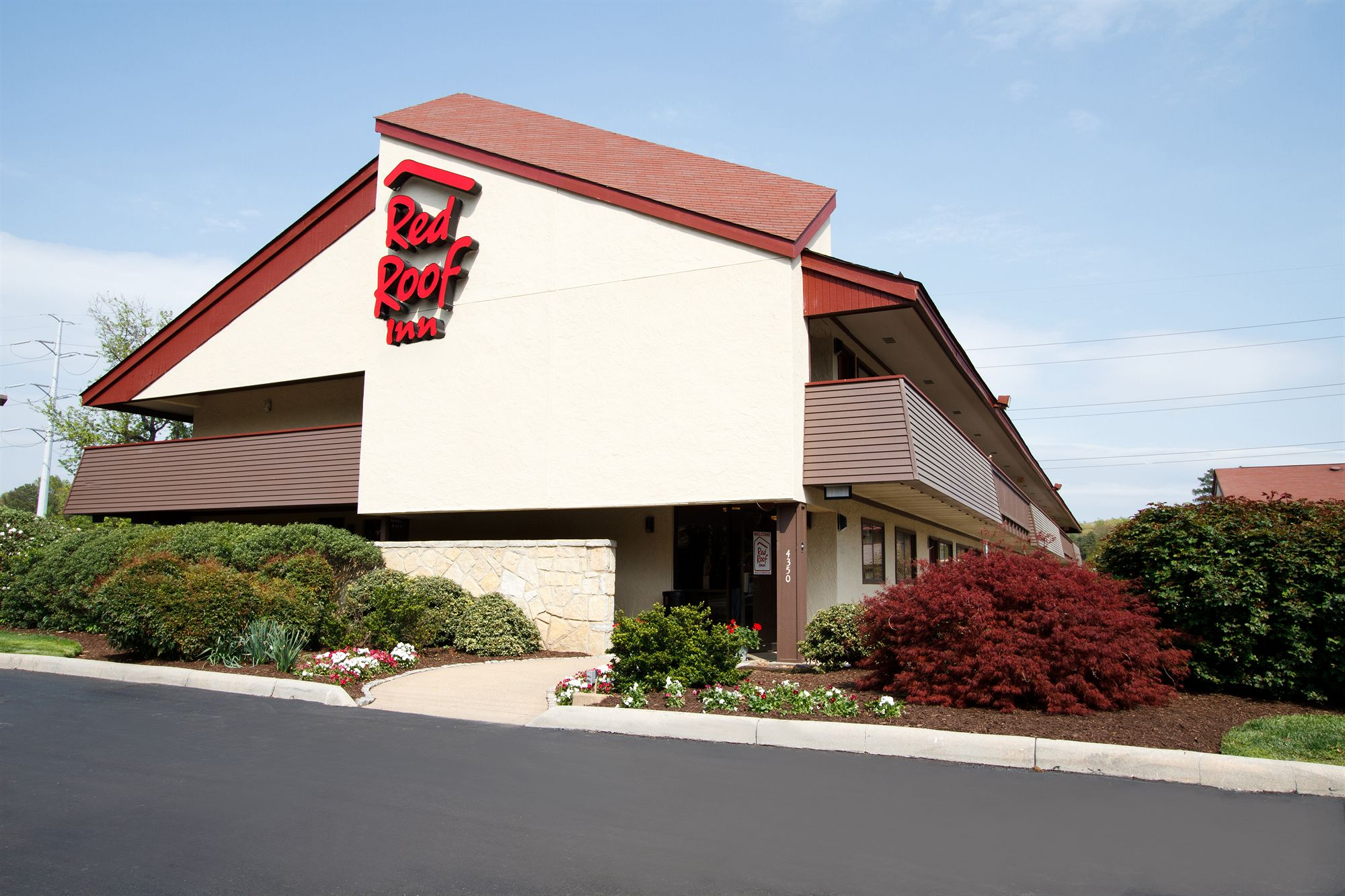 red roof inn essay Metal roof vs shingles diffen home improvement metal roofing is long-lasting, good at keeping a home cool, holds up well in most weather conditions, and.