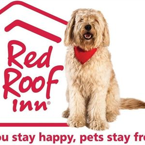 Red Roof Inn Phoenix North  Bell Road