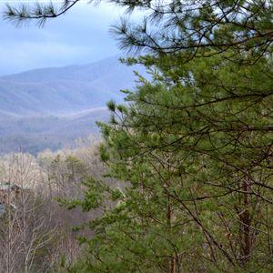 Honeymoon Hills Cabin Rentals in Gatlinburg, TN