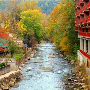 Baymont Inn & Suites On The River Coupons in Gatlinburg, TN