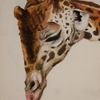 Giraffestudy_thumb