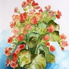 Flowers_still_life_thumb