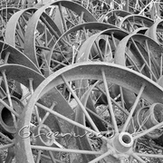 Wheels1_bw_card