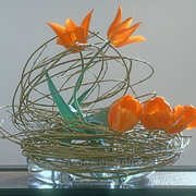 Ikebana-012_card