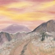 Desert_road_card