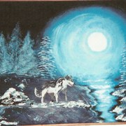 Midnight_wolves_card