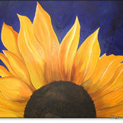 Sunflower1_big_card