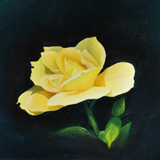 Yellow-rose_card