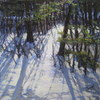 Backyardwinterblues_thumb