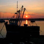 Fishing_boat_sunset_web_card