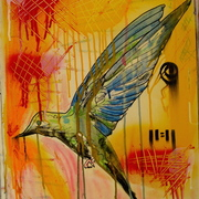 Humming_bird_card