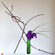 Ikebana-119_card