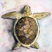 Sea_turtle_painting_small_card