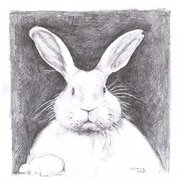 Easter_bunny_portrait_by_lovelycristina_card