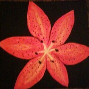 Tiger_lily_card