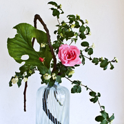Ikebana-125_card