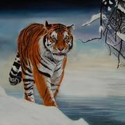 Tiger_05_fertig_card