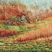 Early_spring_hillside_card