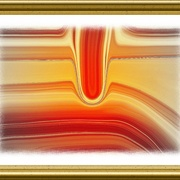 Kolata_orange__2__card