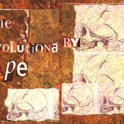 The_evolutionary_ape_card