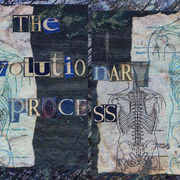 The_evolutionary_process_card