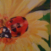 Lady_bug_card