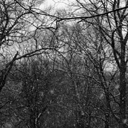 Snowstorm_copy_card
