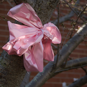 Pink_ribbon_8x10_card