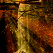 Tunnel_falls_cfsp_2008_viii__2_d_card