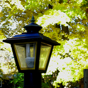Lamp_post_ii_card