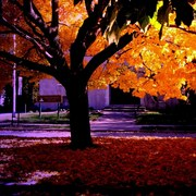 Fall_woodruff_place_tow_hall_edited_iiib_card