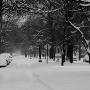 Img_3812jan_09_snow_b_w_card