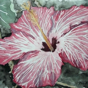 Hibiscus_flower_painting_medium_card