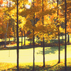 Fall_golf_thumb